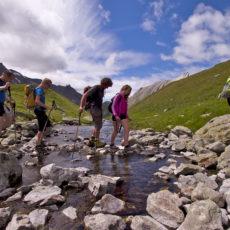 Guides et accompagnateurs de montagne