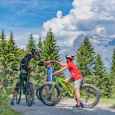 VTT, Fat-Bike et Trottinette - nos professionnels